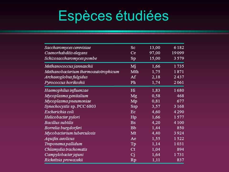 Espèces étudiées Saccharomyces cerevisiae Caenorhabditis elegans