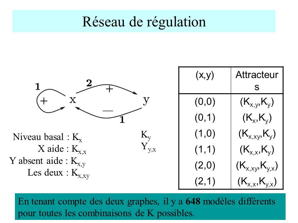 Réseau de régulation (x,y) Attracteurs (0,0) (Kx,y,Ky) (0,1) (Kx,Ky)