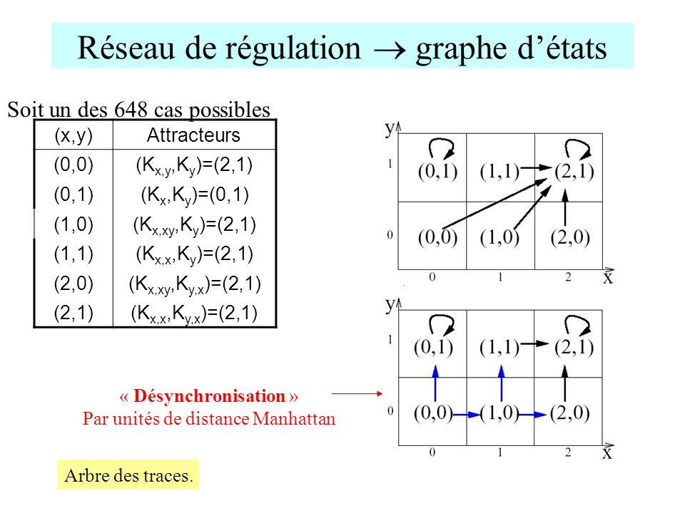 Réseau de régulation  graphe d'états