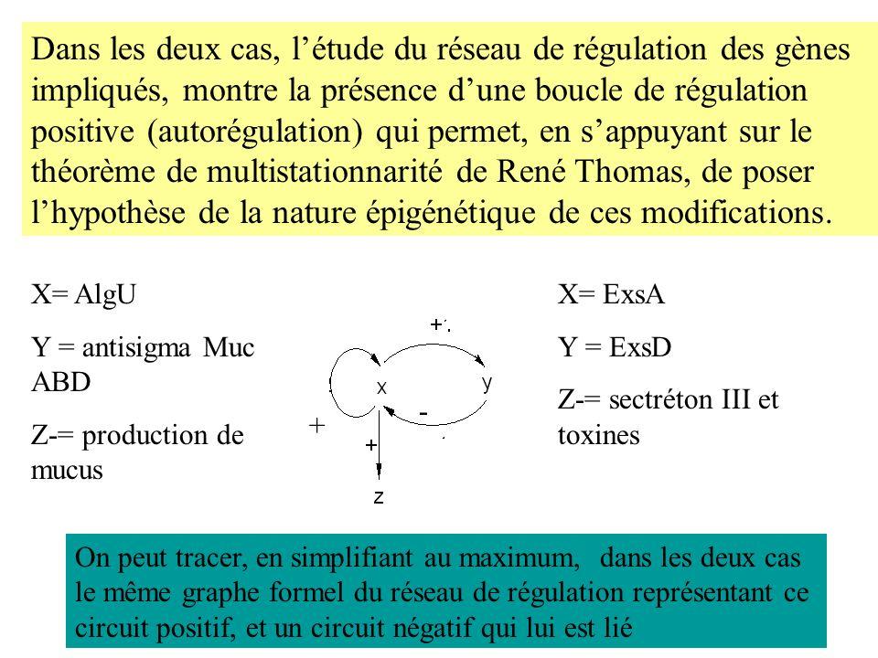 Dans les deux cas, l'étude du réseau de régulation des gènes impliqués, montre la présence d'une boucle de régulation positive (autorégulation) qui permet, en s'appuyant sur le théorème de multistationnarité de René Thomas, de poser l'hypothèse de la nature épigénétique de ces modifications.