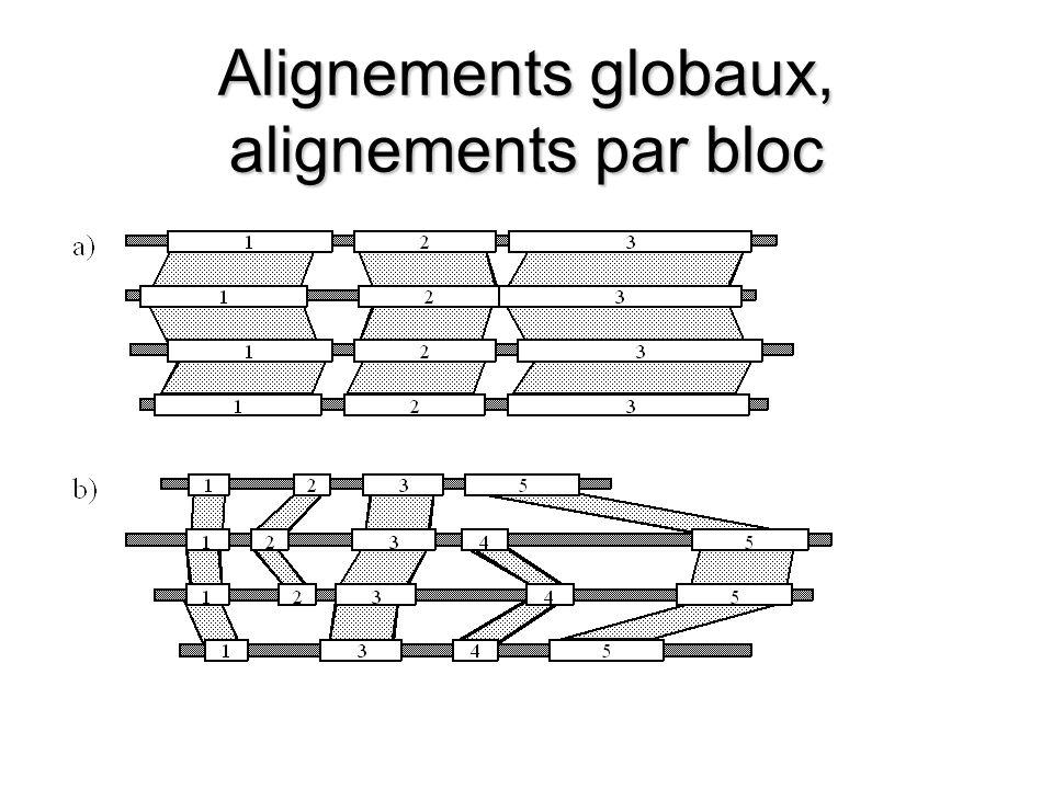 Alignements globaux, alignements par bloc
