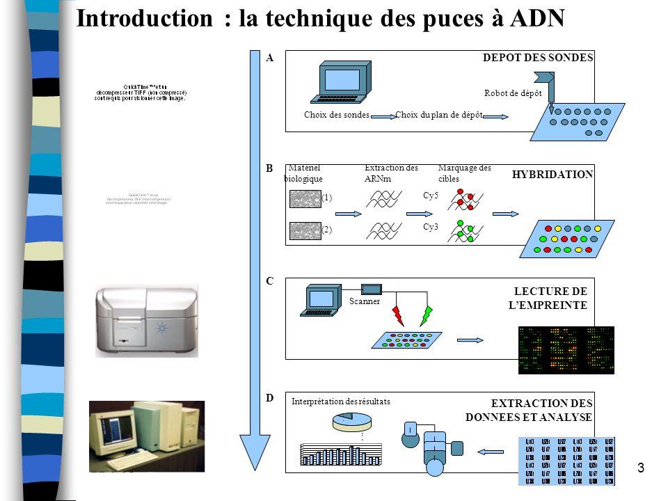 Introduction : la technique des puces à ADN