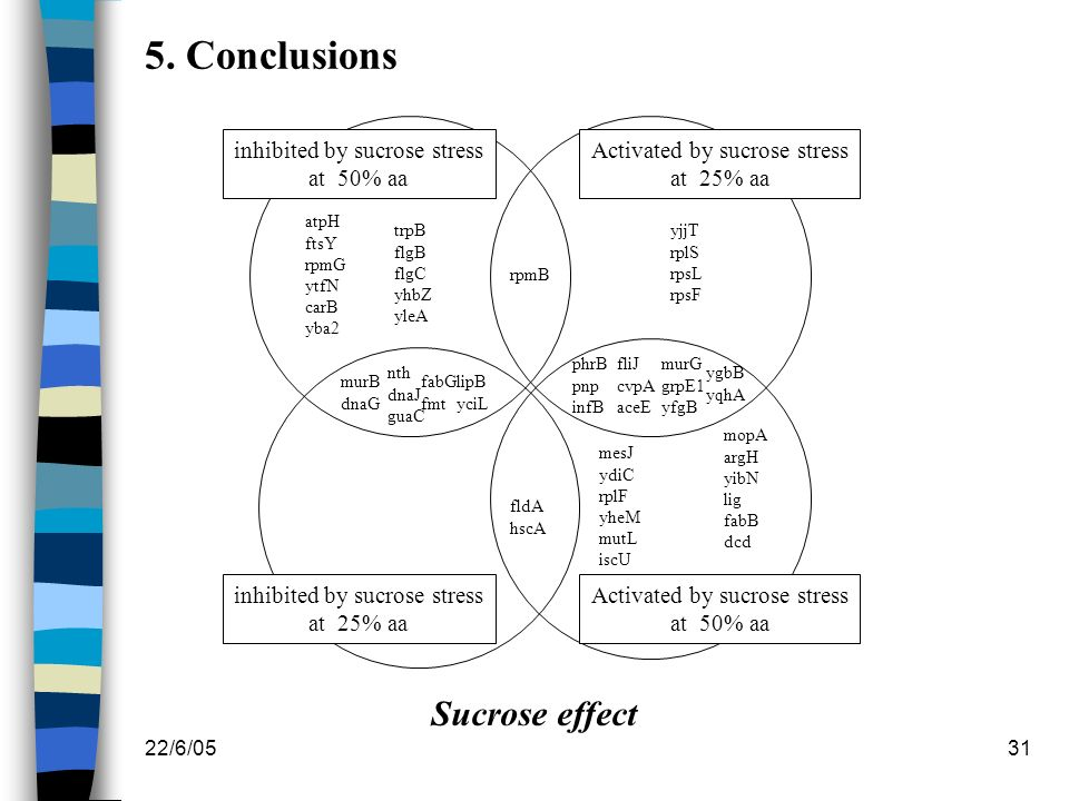 5. Conclusions Sucrose effect inhibited by sucrose stress at 50% aa