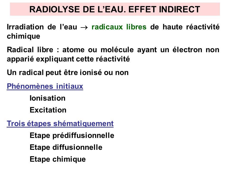 RADIOLYSE DE L'EAU. EFFET INDIRECT