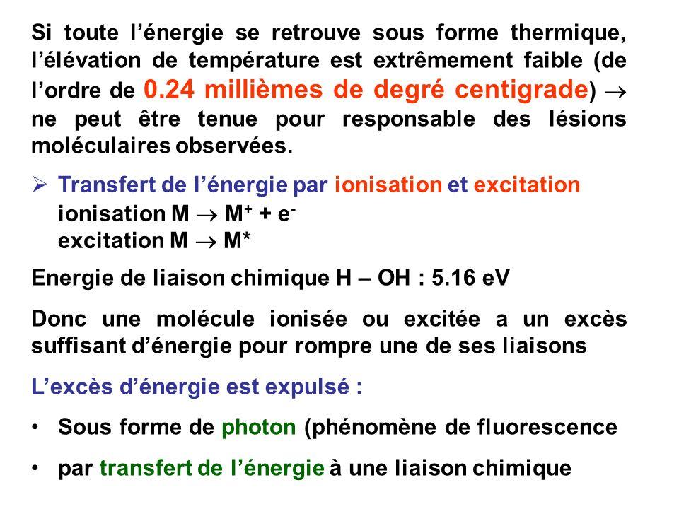 Si toute l'énergie se retrouve sous forme thermique, l'élévation de température est extrêmement faible (de l'ordre de 0.24 millièmes de degré centigrade)  ne peut être tenue pour responsable des lésions moléculaires observées.