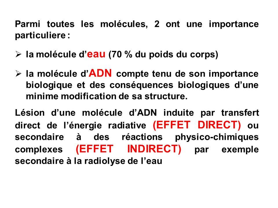 Parmi toutes les molécules, 2 ont une importance particuliere :
