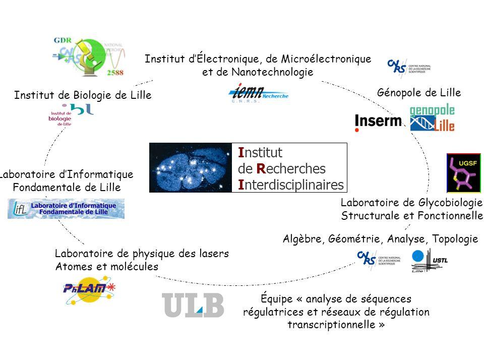 Institut de Recherches Interdisciplinaires