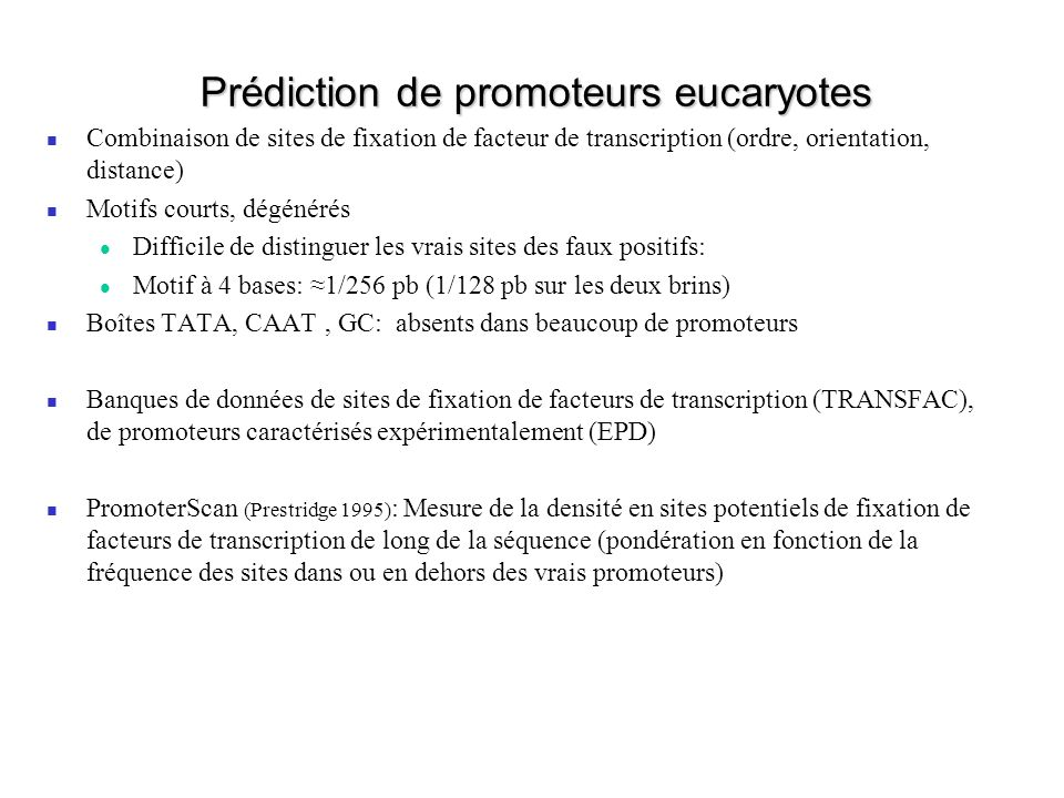 Prédiction de promoteurs eucaryotes