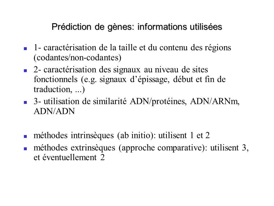 Prédiction de gènes: informations utilisées