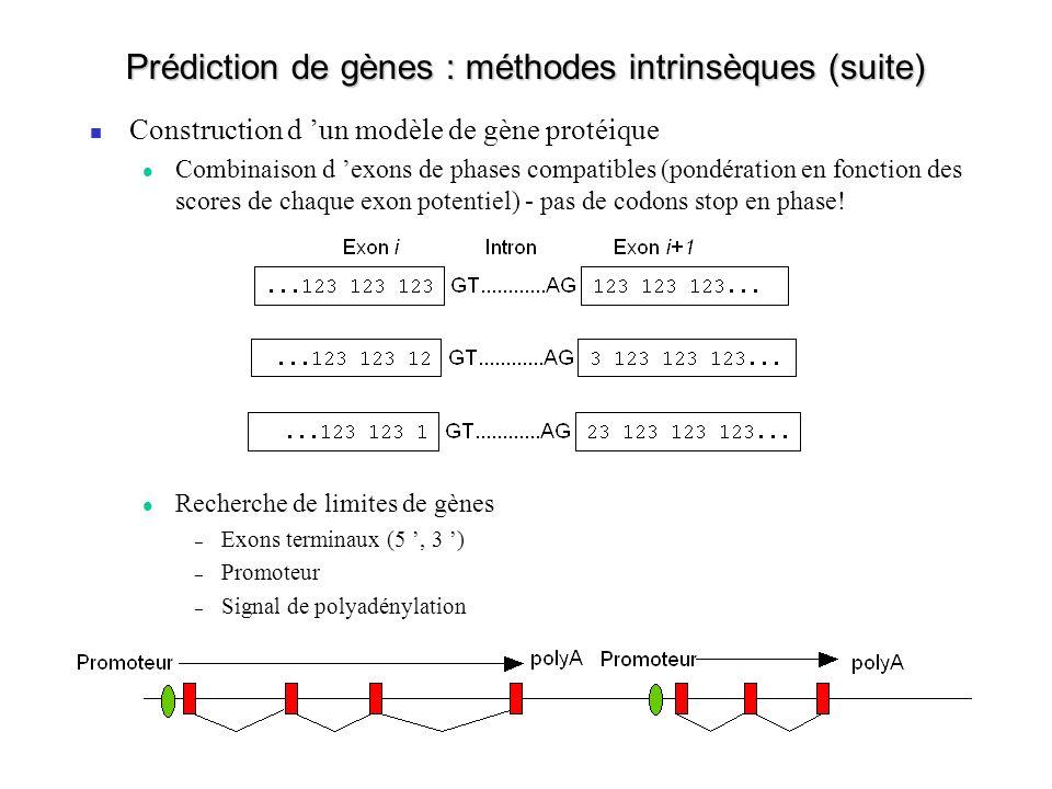 Prédiction de gènes : méthodes intrinsèques (suite)