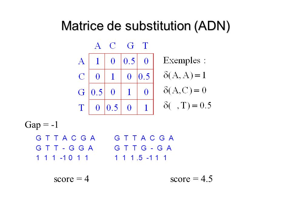 Matrice de substitution (ADN)