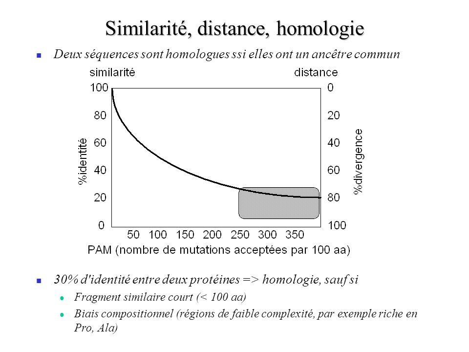 Similarité, distance, homologie