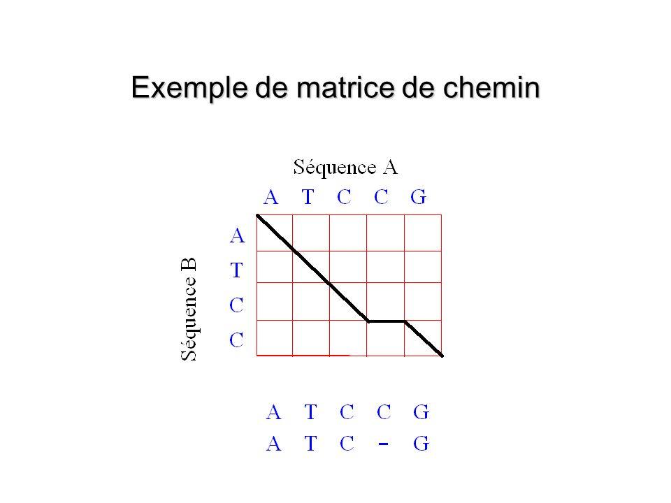 Exemple de matrice de chemin