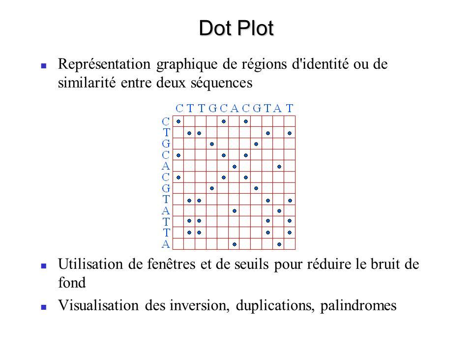 Dot Plot Représentation graphique de régions d identité ou de similarité entre deux séquences.