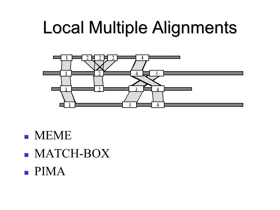 Local Multiple Alignments