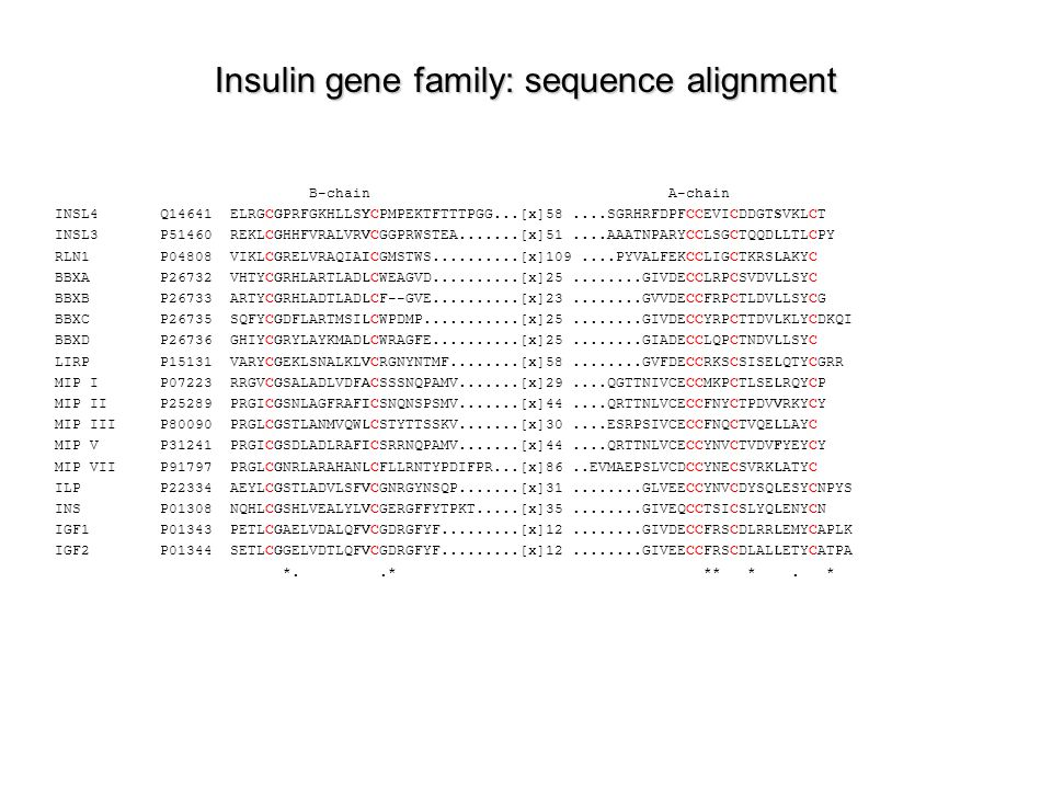 Insulin gene family: sequence alignment