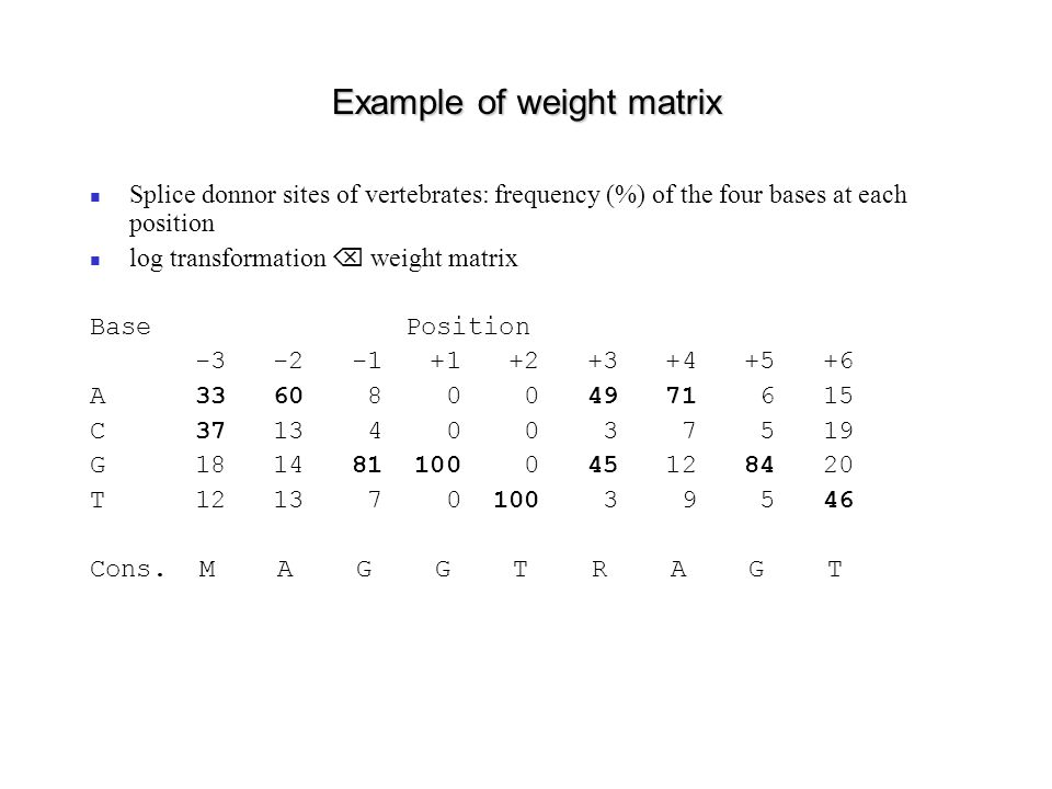 Example of weight matrix