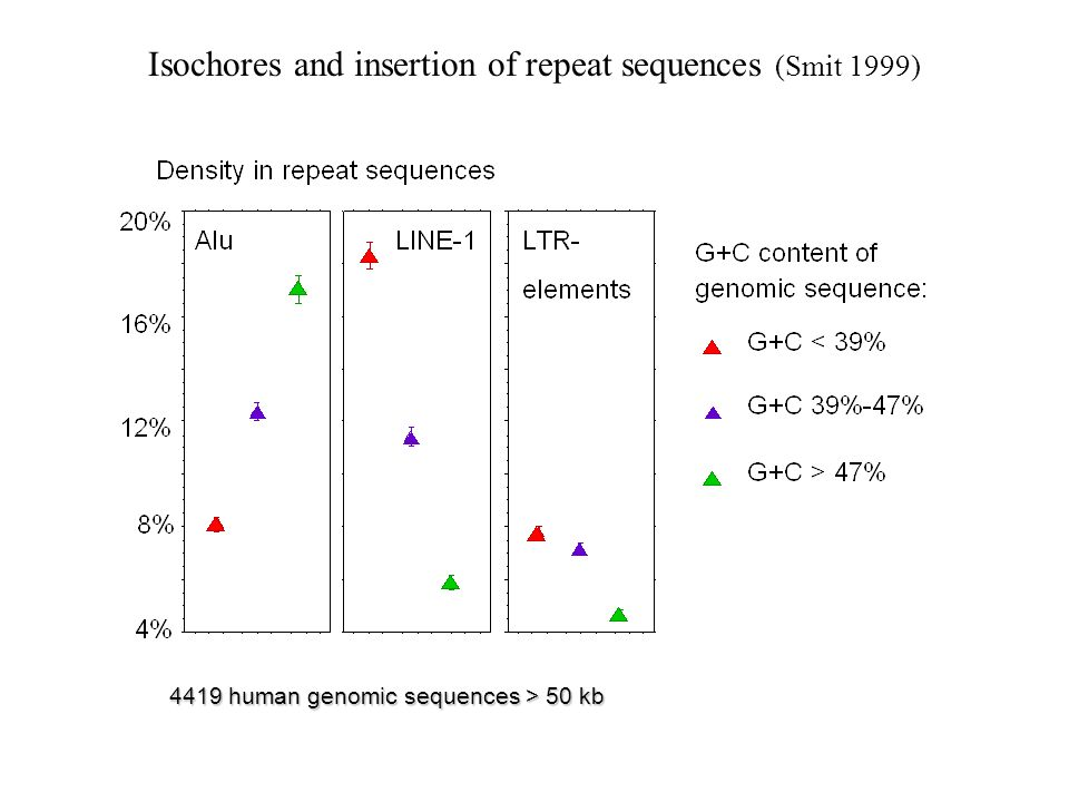Isochores and insertion of repeat sequences (Smit 1999)