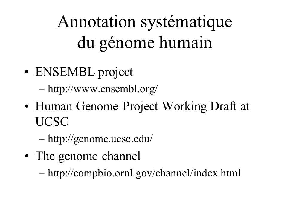 Annotation systématique du génome humain