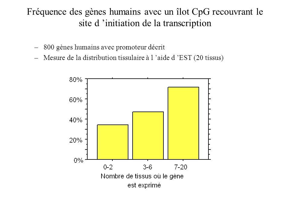 Fréquence des gènes humains avec un îlot CpG recouvrant le site d 'initiation de la transcription