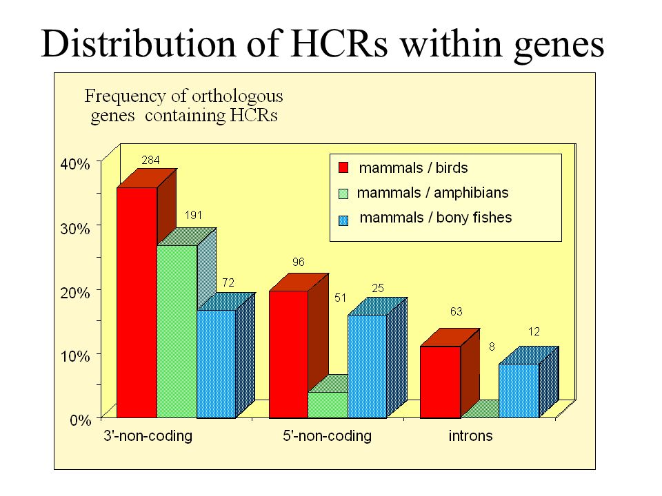 Distribution of HCRs within genes