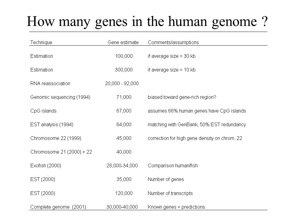 How many genes in the human genome