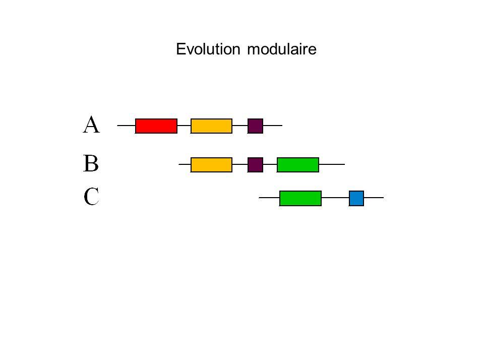 Evolution modulaire