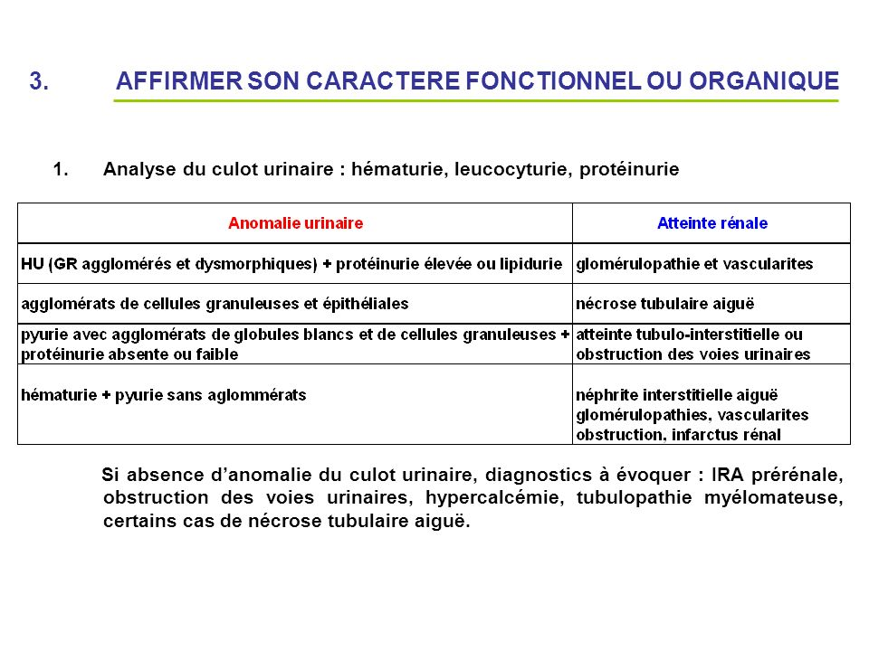 3. AFFIRMER SON CARACTERE FONCTIONNEL OU ORGANIQUE