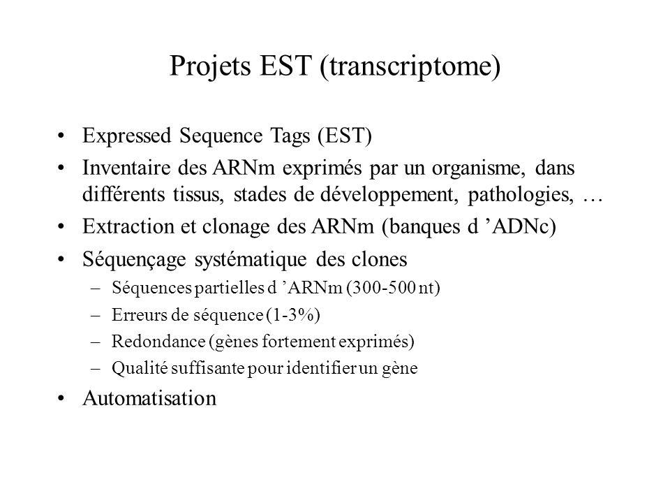 Projets EST (transcriptome)