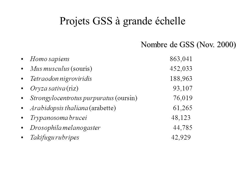 Projets GSS à grande échelle