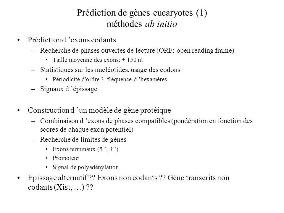 Prédiction de gènes eucaryotes (1) méthodes ab initio
