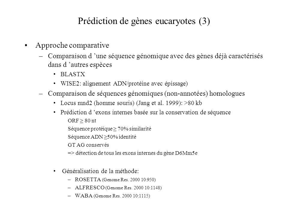 Prédiction de gènes eucaryotes (3)
