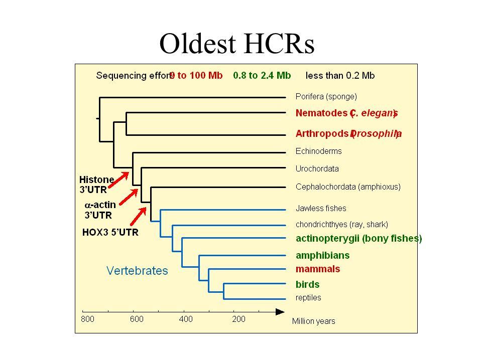Oldest HCRs