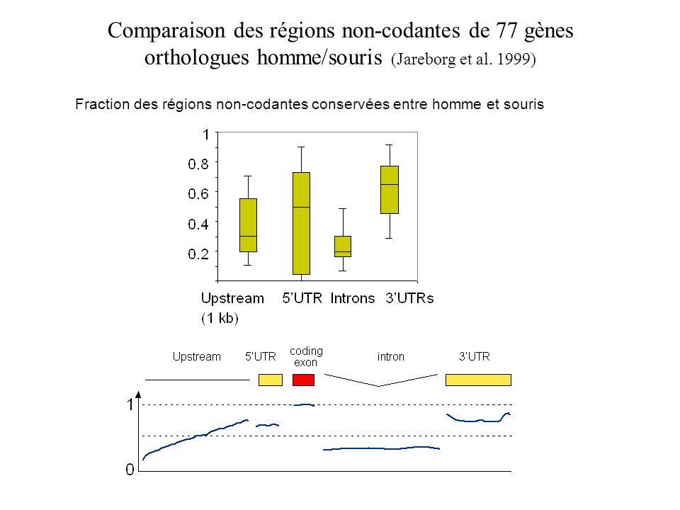 Comparaison des régions non-codantes de 77 gènes orthologues homme/souris (Jareborg et al. 1999)