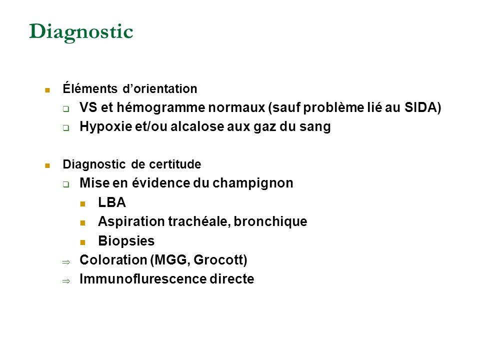 Diagnostic VS et hémogramme normaux (sauf problème lié au SIDA)