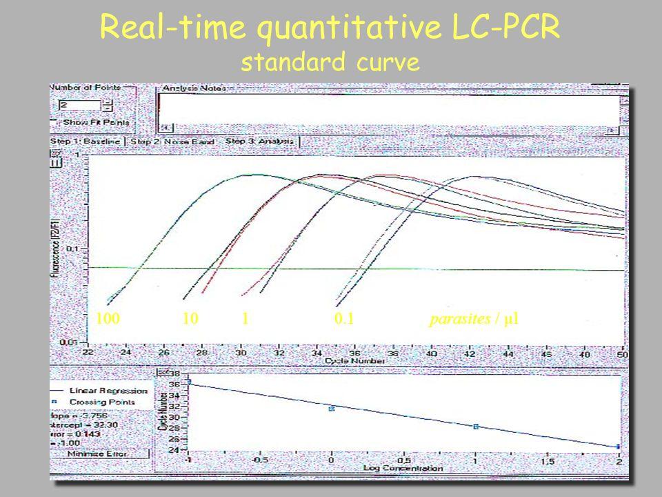 Real-time quantitative LC-PCR