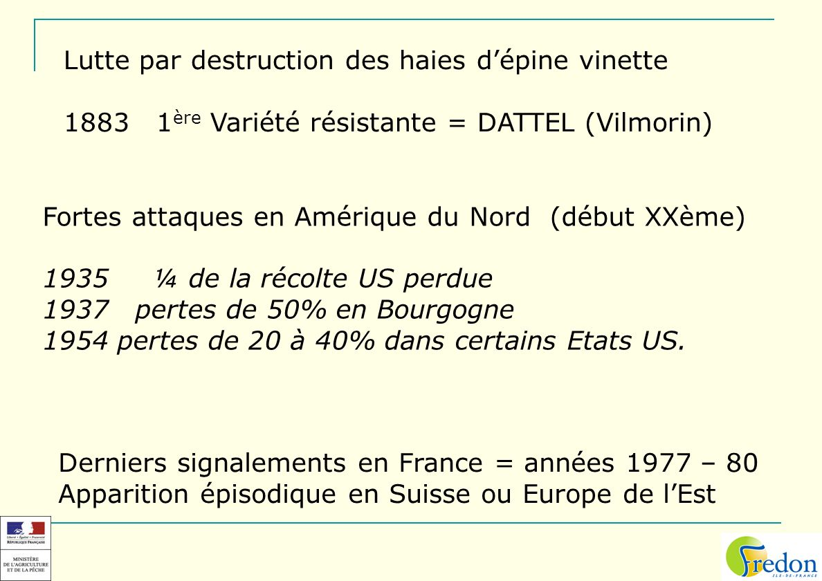 Lutte par destruction des haies d'épine vinette