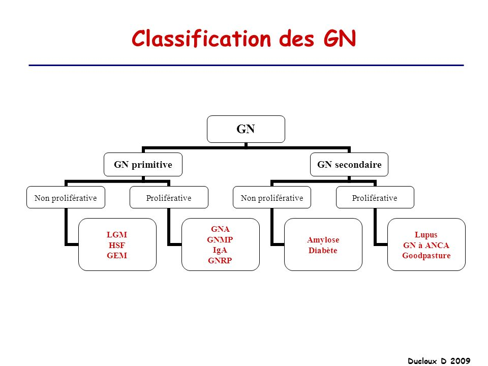 Classification des GN