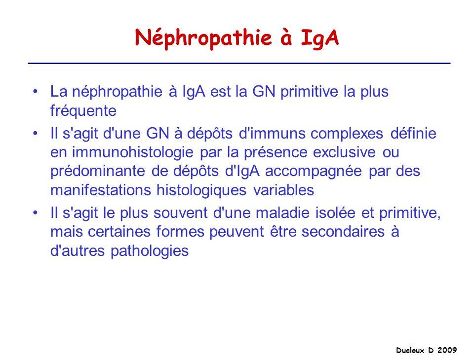 Néphropathie à IgA La néphropathie à IgA est la GN primitive la plus fréquente.