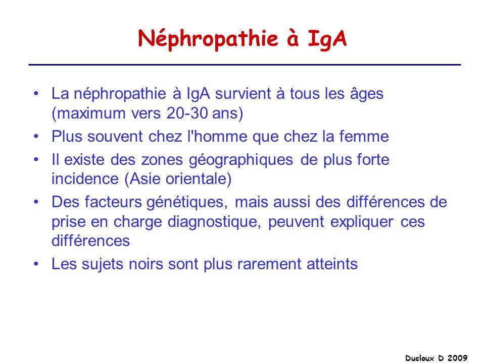 Néphropathie à IgA La néphropathie à IgA survient à tous les âges (maximum vers 20-30 ans) Plus souvent chez l homme que chez la femme.