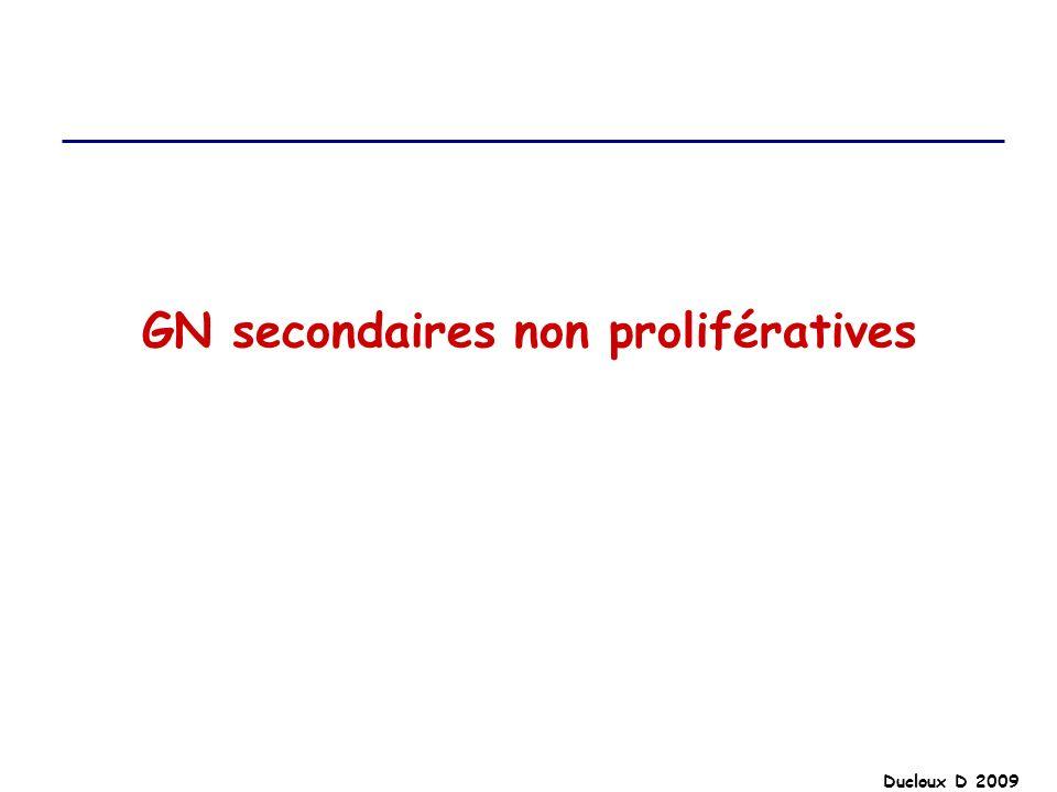 GN secondaires non prolifératives