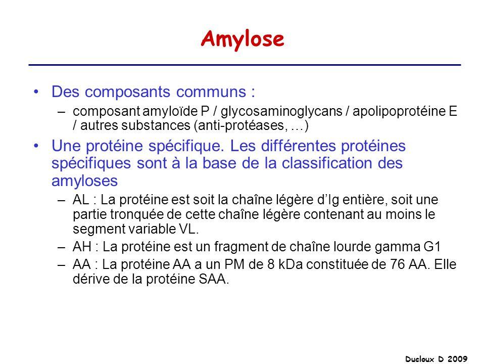Amylose Des composants communs :