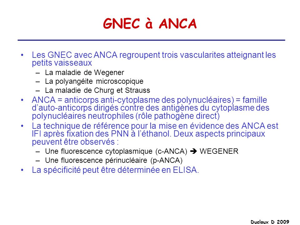 GNEC à ANCALes GNEC avec ANCA regroupent trois vascularites atteignant les petits vaisseaux. La maladie de Wegener.