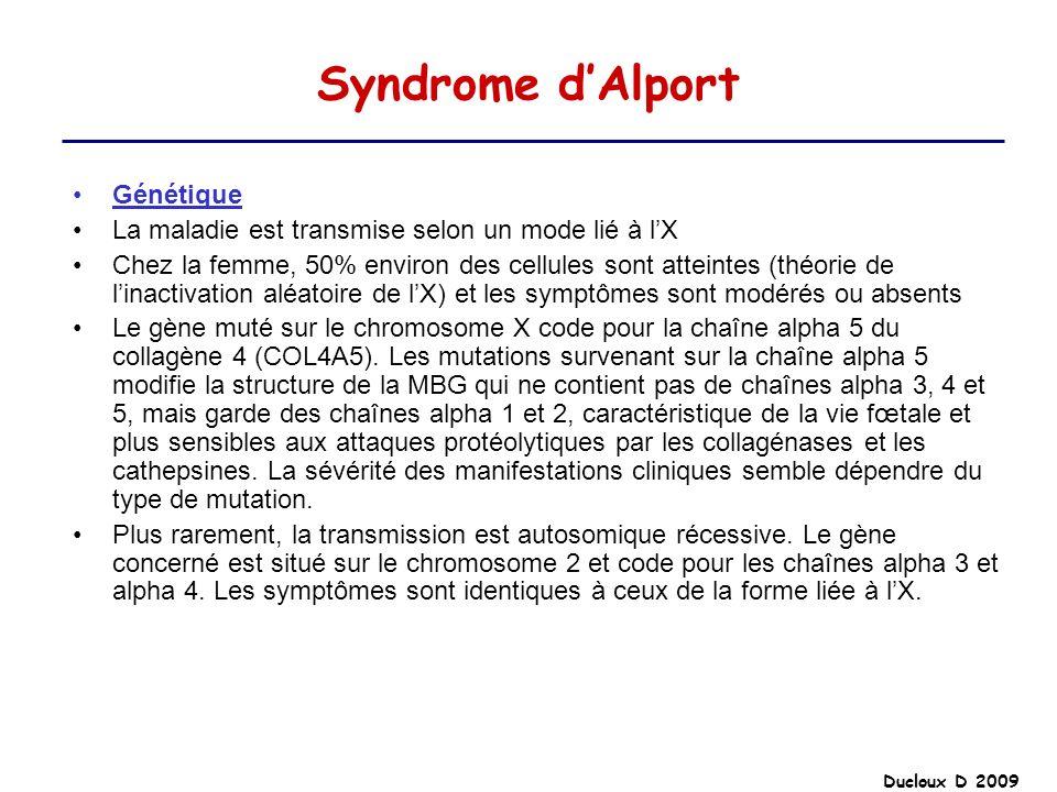 Syndrome d'Alport Génétique