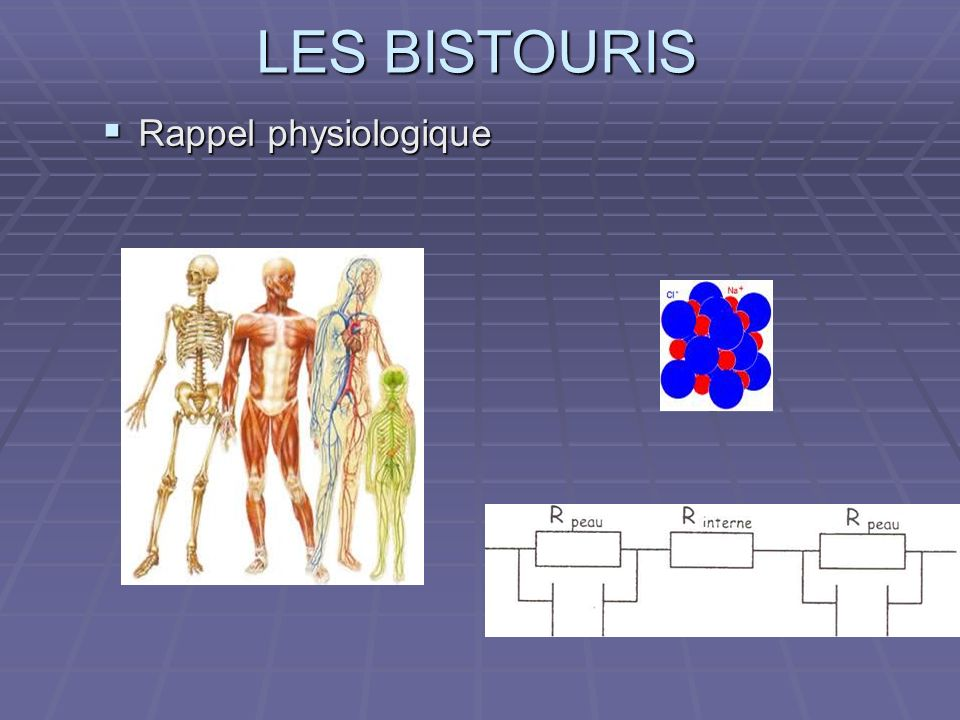 Rappel physiologique QUESTION :