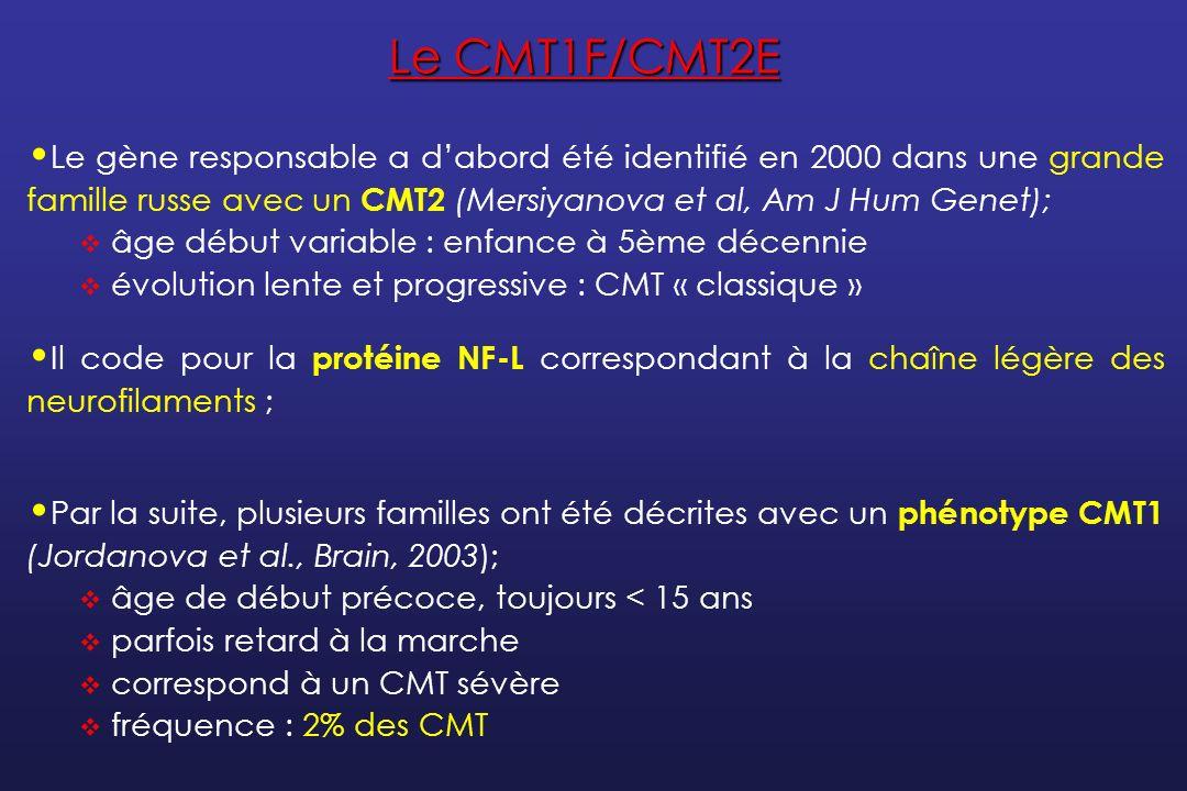 Le CMT1F/CMT2E Le gène responsable a d'abord été identifié en 2000 dans une grande famille russe avec un CMT2 (Mersiyanova et al, Am J Hum Genet);