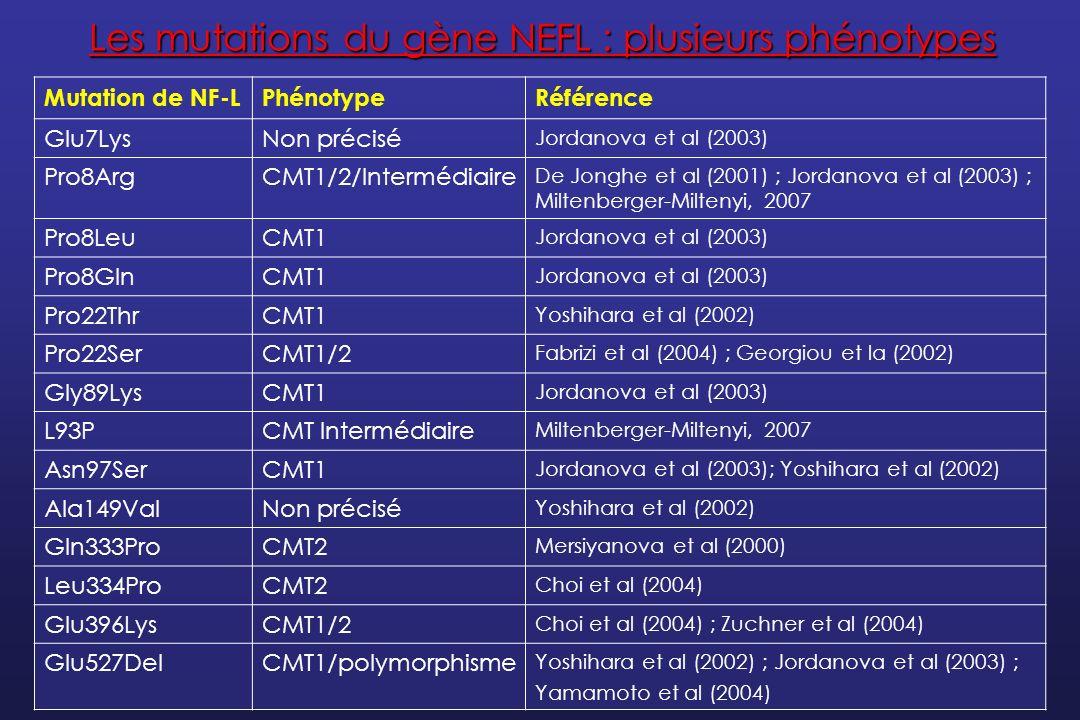 Les mutations du gène NEFL : plusieurs phénotypes