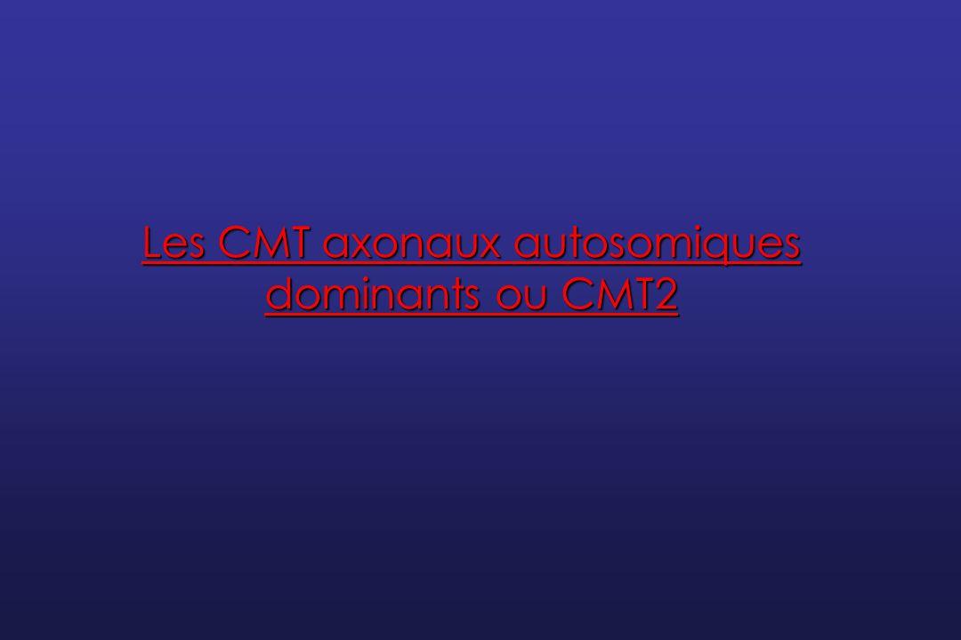 Les CMT axonaux autosomiques dominants ou CMT2