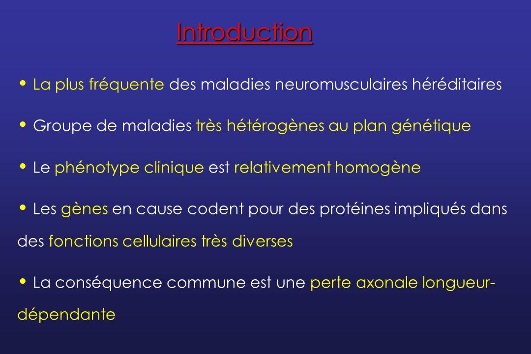 Introduction La plus fréquente des maladies neuromusculaires héréditaires. Groupe de maladies très hétérogènes au plan génétique.