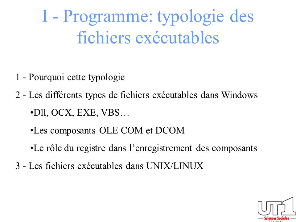 I - Programme: typologie des fichiers exécutables